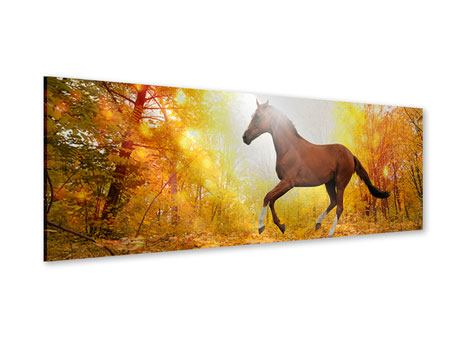 Panoramic Acrylic Print Whole Blood In Autumn Forest
