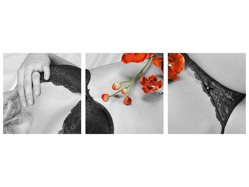 Panoramic 3 Piece Acrylic Print Lingerie Beauty