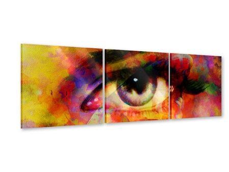Panoramic 3 Piece Acrylic Print The Eye
