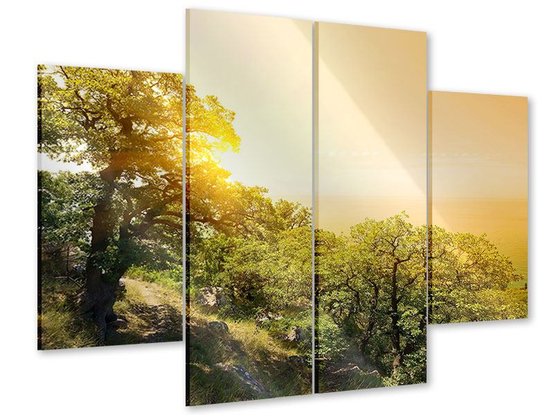 4 Piece Acrylic Print Sunset In Nature