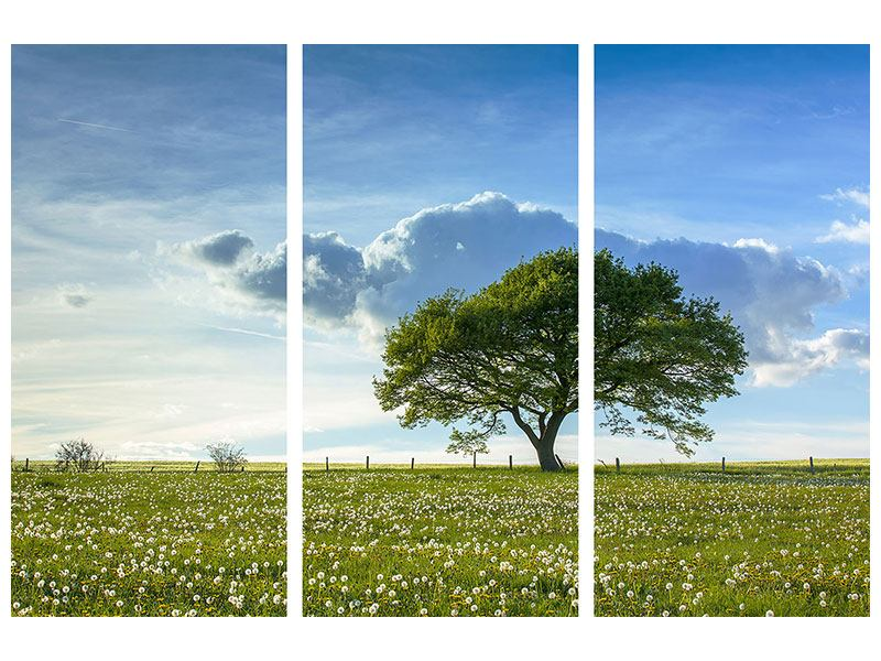 Tableau Aluminium en 3 parties Arbre de printemps