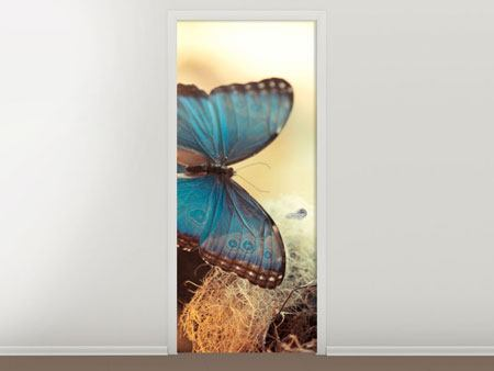 Door Mural Butterflies