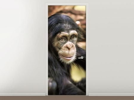 Door Mural The Chimpanzee