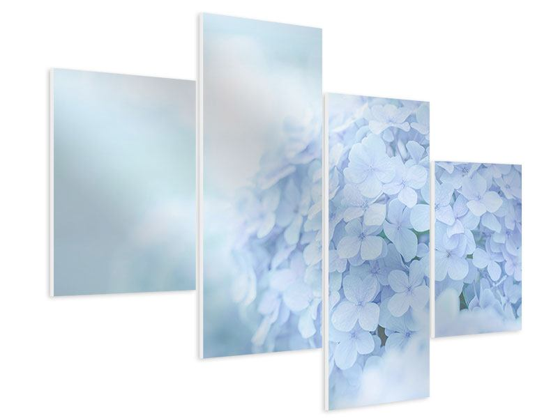 Modern 4 Piece Forex Print The Hydrangea