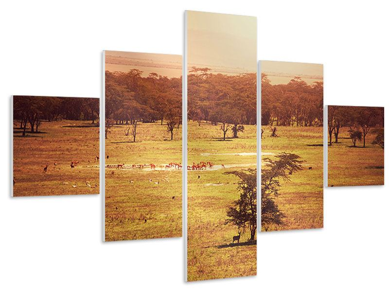 5 Piece Forex Print Picturesque Africa
