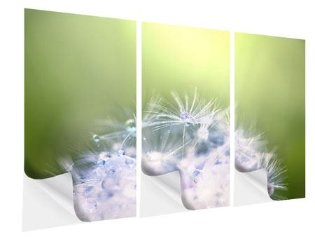 3 Piece Self-Adhesive Poster Dandelion XL In Morning Dew
