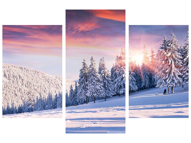 Posters adhesif en 3 parties moderne Paysage d'hiver