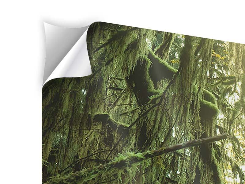 Modern 4 Piece Self-Adhesive Poster Dreamy Forest
