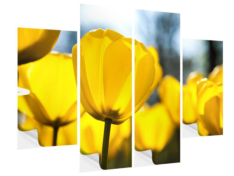 4 Piece Self-Adhesive Poster Yellow Tulips In XXL