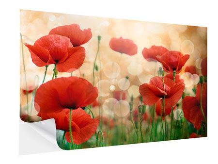 Self-Adhesive Poster The Poppy