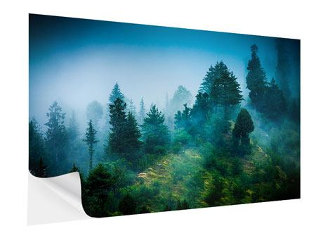 Self-Adhesive Poster Mysterious Forest
