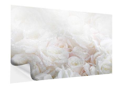 Self-Adhesive Poster White Roses In The Morning Dew