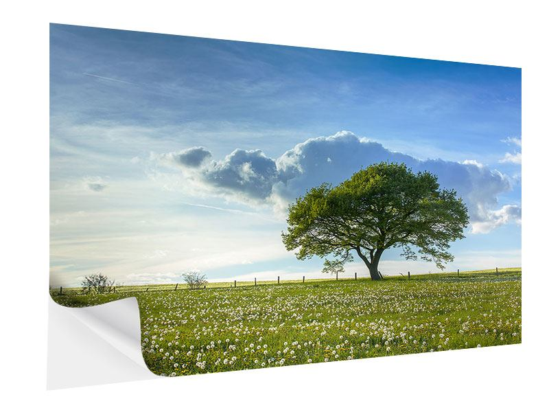 Self-Adhesive Poster Spring Tree