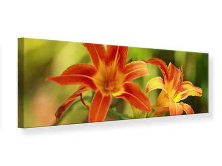 Panoramic Canvas Print Natural Lilies