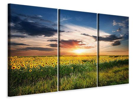 3 Piece Canvas Print A Field Of Sunflowers