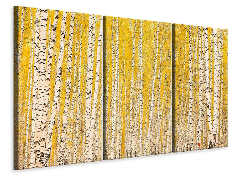 3 Piece Canvas Print The Birch Forest In Autumn