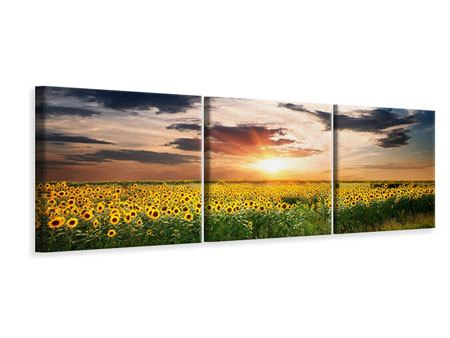 Panoramic 3 Piece Canvas Print A Field Of Sunflowers