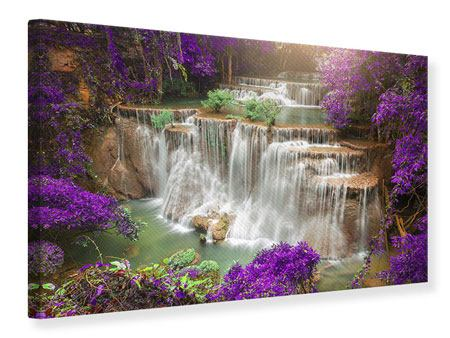 Canvas Print Photowallpaper Garden Eden