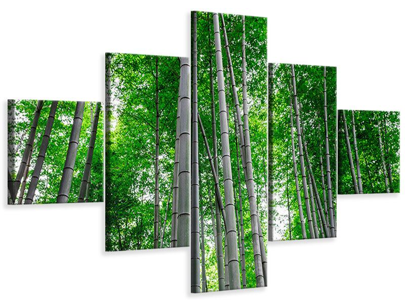 5 Piece Canvas Print Bamboo Forest