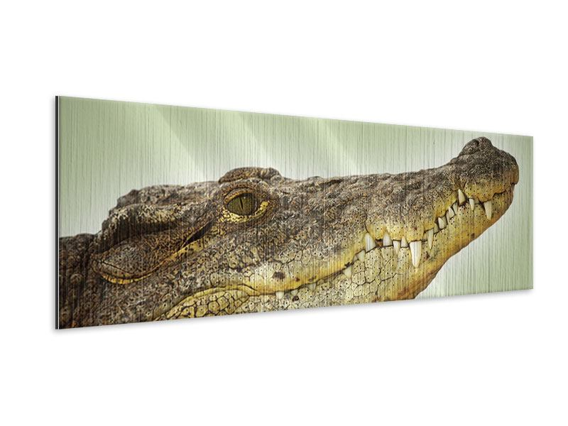 Metallic-Bild Panorama Close Up Alligator