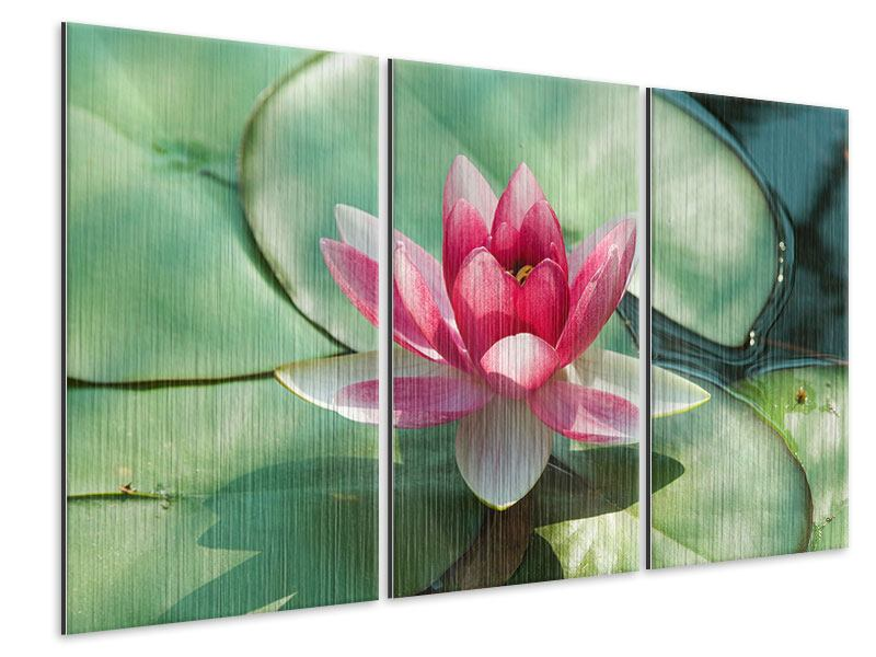 3 Piece Metallic Print The Frog And The Lotus Leaf