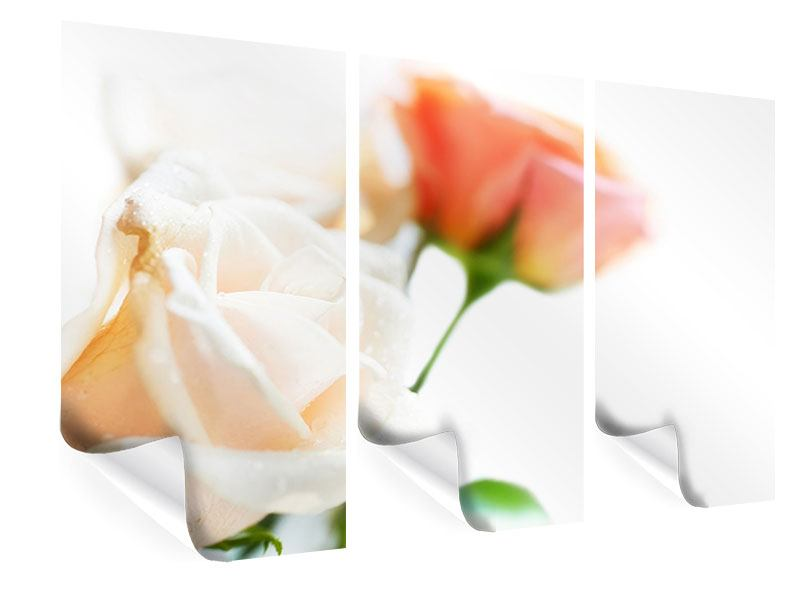3 Piece Poster Rose Perspective