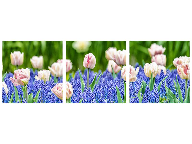 Panoramic 3 Piece Poster A Garden With Tulips
