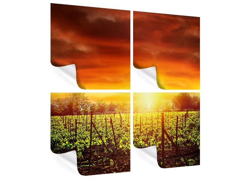 4 Piece Poster The Vineyard At Sunset